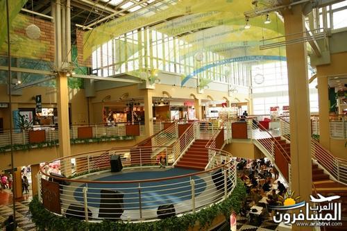دليل الأماكن السياحية للمسافرون اليابان arabtrvl14847678363410.jpg